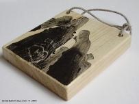 floorboards...plancher...deski